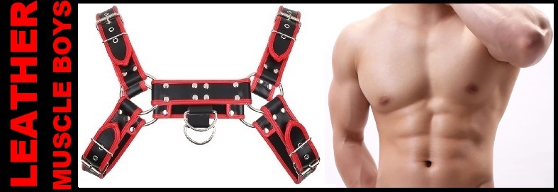 RED MUSCLE CHEST HARNESS